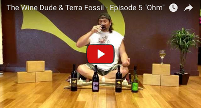 The Wine Dude & Terra Fossil - Ohm